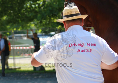 FEI-World-Driving-Championship-for-Singles_2016_Tag1_IMG_4846