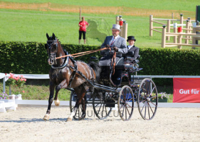 FEI-World-Driving-Championship-for-Singles_2016_Tag2_IMG_5823