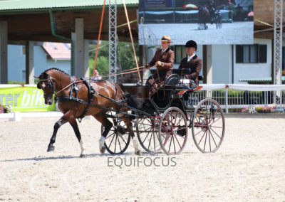 FEI-World-Driving-Championship-for-Singles_2016_Tag2_IMG_6093
