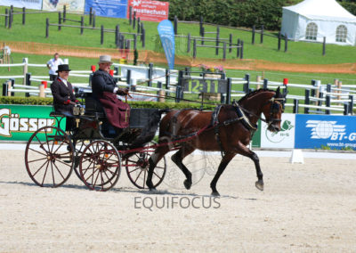 FEI-World-Driving-Championship-for-Singles_2016_Tag2_IMG_6140