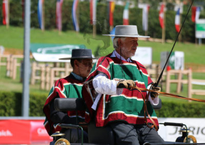 FEI-World-Driving-Championship-for-Singles_2016_Tag2_IMG_6239