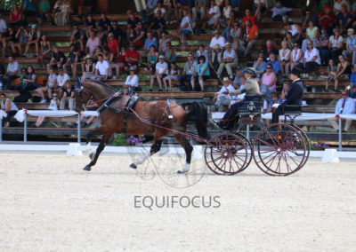 FEI-World-Driving-Championship-for-Singles_2016_Tag2_IMG_6266