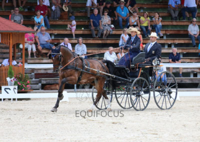 FEI-World-Driving-Championship-for-Singles_2016_Tag2_IMG_6411