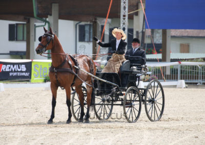 FEI-World-Driving-Championship-for-Singles_2016_Tag3_IMG_7162