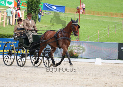 FEI-World-Driving-Championship-for-Singles_2016_Tag3_IMG_7385