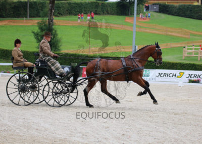 FEI-World-Driving-Championship-for-Singles_2016_Tag3_IMG_7446