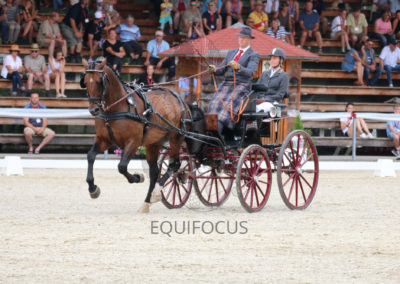 FEI-World-Driving-Championship-for-Singles_2016_Tag3_IMG_7695