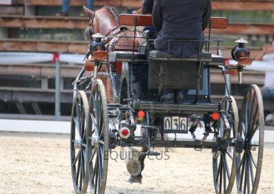 FEI-World-Driving-Championship-for-Singles_2016_Tag3_IMG_7779