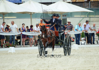 FEI-World-Driving-Championship-for-Singles_2016_Tag3_IMG_7884