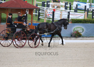 FEI-World-Driving-Championship-for-Singles_2016_Tag3_IMG_7927