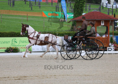 FEI-World-Driving-Championship-for-Singles_2016_Tag3_IMG_7980