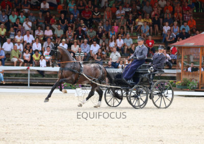 FEI-World-Driving-Championship-for-Singles_2016_Tag3_IMG_8381
