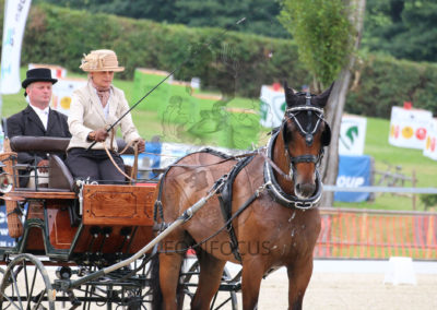 FEI-World-Driving-Championship-for-Singles_2016_Tag3_IMG_8518