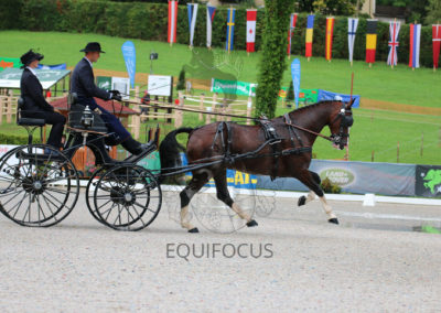 FEI-World-Driving-Championship-for-Singles_2016_Tag3_IMG_9176