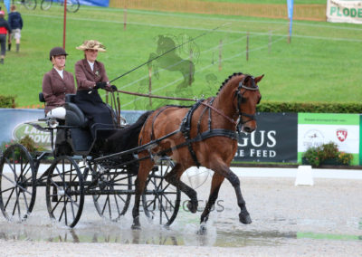 FEI-World-Driving-Championship-for-Singles_2016_Tag3_IMG_9289