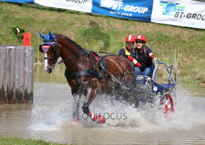 FEI-World-Driving-Championship-for-Singles_2016_Tag4_IMG_0029
