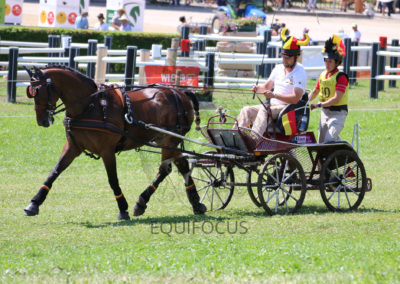 FEI-World-Driving-Championship-for-Singles_2016_Tag4_IMG_0068