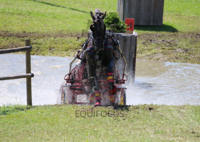 FEI-World-Driving-Championship-for-Singles_2016_Tag4_IMG_0077