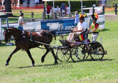 FEI-World-Driving-Championship-for-Singles_2016_Tag4_IMG_0093