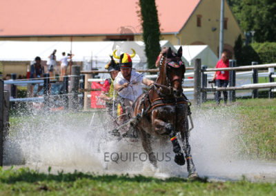 FEI-World-Driving-Championship-for-Singles_2016_Tag4_IMG_0151