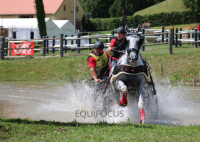 FEI-World-Driving-Championship-for-Singles_2016_Tag4_IMG_0198