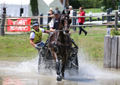 FEI-World-Driving-Championship-for-Singles_2016_Tag4_IMG_0222