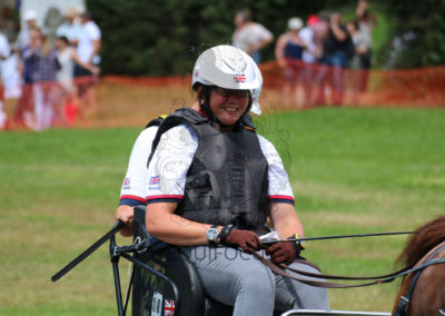 FEI-World-Driving-Championship-for-Singles_2016_Tag4_IMG_0237