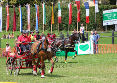 FEI-World-Driving-Championship-for-Singles_2016_Tag4_IMG_0300