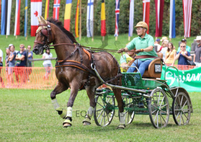 FEI-World-Driving-Championship-for-Singles_2016_Tag4_IMG_0368