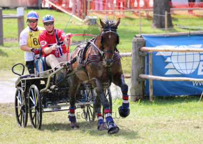 FEI-World-Driving-Championship-for-Singles_2016_Tag4_IMG_0393