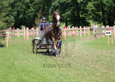 FEI-World-Driving-Championship-for-Singles_2016_Tag4_IMG_0474