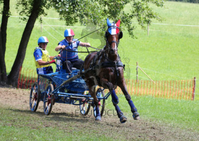 FEI-World-Driving-Championship-for-Singles_2016_Tag4_IMG_0500