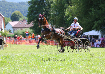 FEI-World-Driving-Championship-for-Singles_2016_Tag4_IMG_0633
