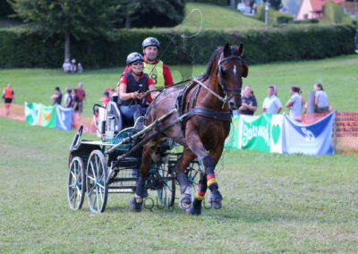 FEI-World-Driving-Championship-for-Singles_2016_Tag4_IMG_0694