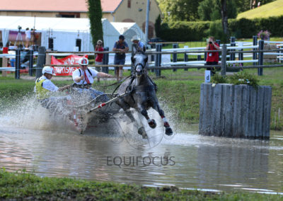 FEI-World-Driving-Championship-for-Singles_2016_Tag4_IMG_0701