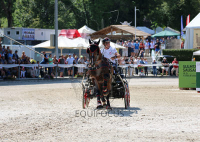FEI-World-Driving-Championship-for-Singles_2016_Tag4_IMG_0782