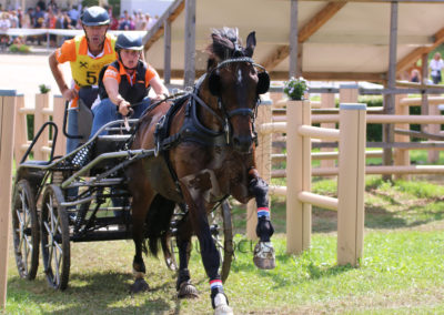 FEI-World-Driving-Championship-for-Singles_2016_Tag4_IMG_0878