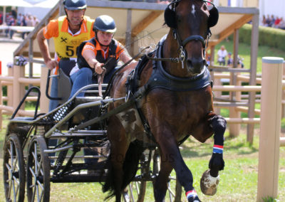 FEI-World-Driving-Championship-for-Singles_2016_Tag4_IMG_0881
