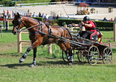 FEI-World-Driving-Championship-for-Singles_2016_Tag4_IMG_0941