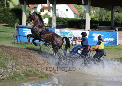 FEI-World-Driving-Championship-for-Singles_2016_Tag4_IMG_0956