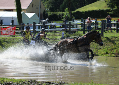 FEI-World-Driving-Championship-for-Singles_2016_Tag4_IMG_1078