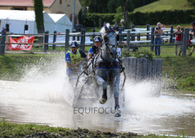 FEI-World-Driving-Championship-for-Singles_2016_Tag4_IMG_1106