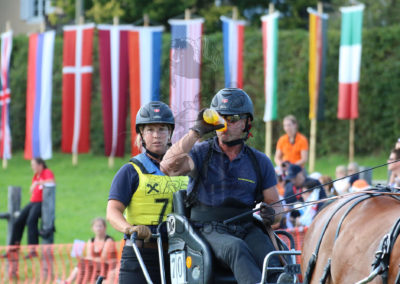 FEI-World-Driving-Championship-for-Singles_2016_Tag4_IMG_1127