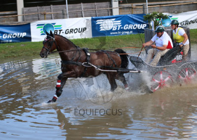FEI-World-Driving-Championship-for-Singles_2016_Tag4_IMG_1293