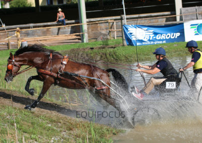 FEI-World-Driving-Championship-for-Singles_2016_Tag4_IMG_1328