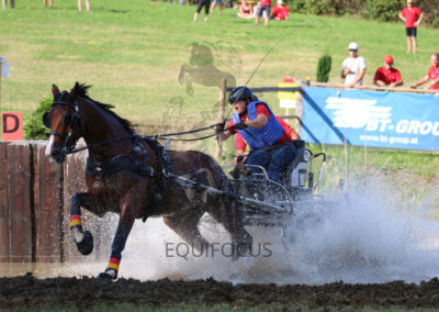 FEI-World-Driving-Championship-for-Singles_2016_Tag4_IMG_1345