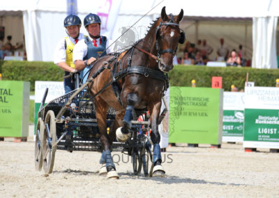 FEI-World-Driving-Championship-for-Singles_2016_Tag4_IMG_9697