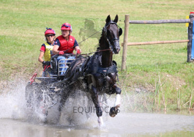 FEI-World-Driving-Championship-for-Singles_2016_Tag4_IMG_9724