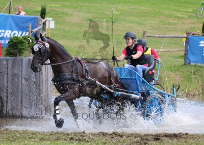 FEI-World-Driving-Championship-for-Singles_2016_Tag4_IMG_9768