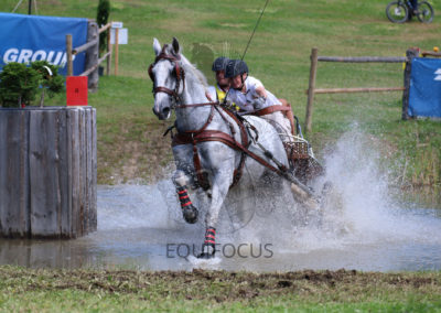 FEI-World-Driving-Championship-for-Singles_2016_Tag4_IMG_9831